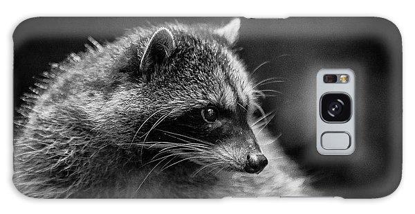 Raccoon 3 Galaxy Case