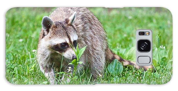 Raccoon Smelling Flowers Galaxy Case