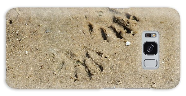 Raccoon Tracks In The Sand Galaxy Case