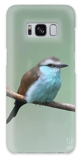 Racket-tailed Roller V2 Galaxy Case