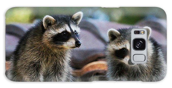 Racoons On The Roof Galaxy Case