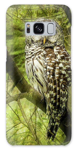 Radiating Barred Owl Galaxy Case