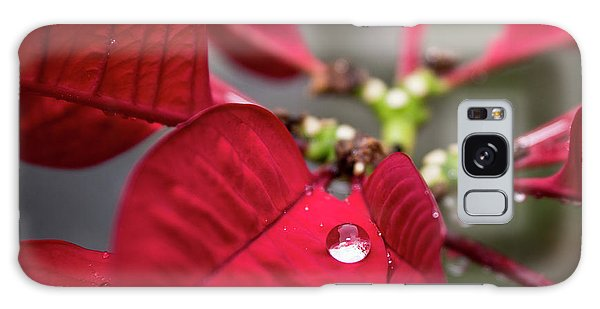 Rain Drop On A Poinsettia  Galaxy Case