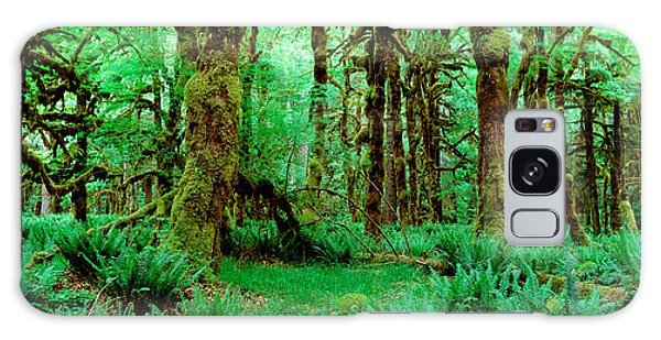 Rain Forest, Olympic National Park Galaxy Case