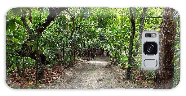 Rain Forest Road Galaxy Case
