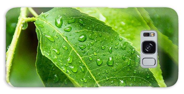 Rain On Leaves Galaxy Case