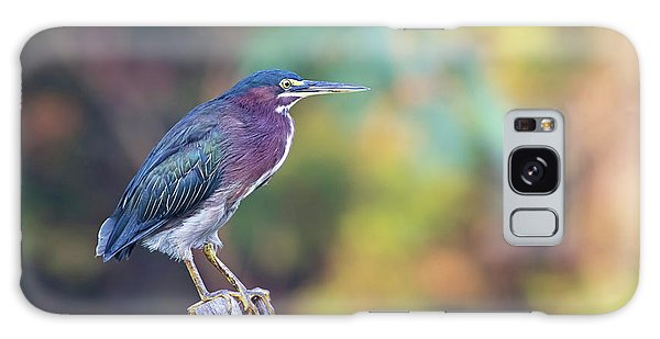 Rainbow Heron Galaxy Case
