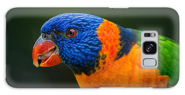 Rainbow Lorikeet Galaxy Case
