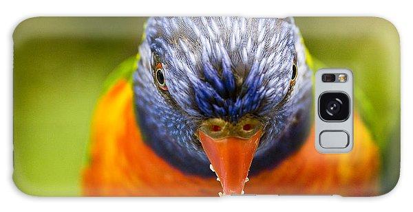Parrot Galaxy S8 Case - Rainbow Lorikeet by Sheila Smart Fine Art Photography