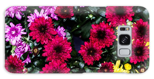 Rainbow Of Color Flowers Galaxy Case