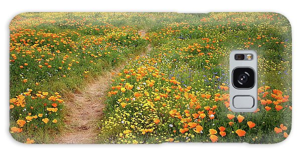 Rainbow Of Wildflowers Bloom Near Diamond Lake In California Galaxy Case