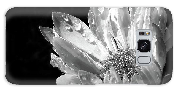 Raindrops On Daisy Black And White Galaxy Case by Jennie Marie Schell
