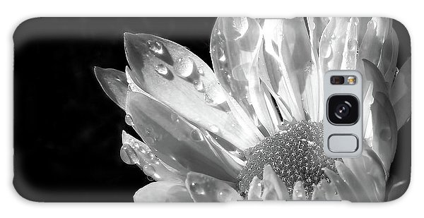 Raindrops On Daisy Black And White Galaxy Case