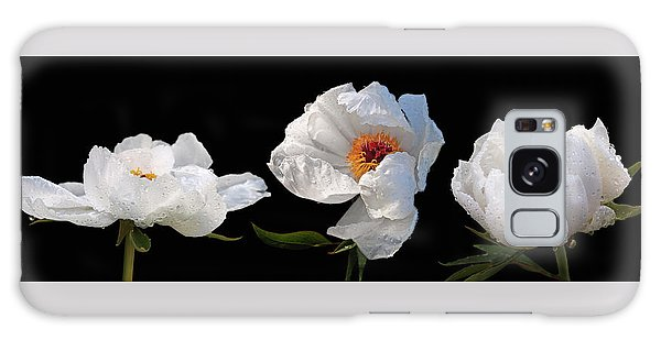 Raindrops On White Peonies Panoramic Galaxy Case by Gill Billington
