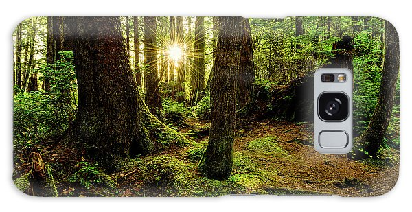 Olympic National Park Galaxy Case - Rainforest Path by Chad Dutson