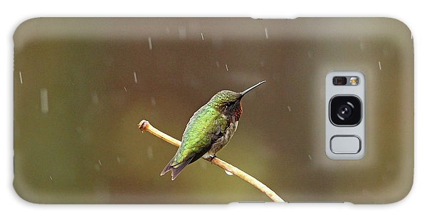 Rainy Day Hummingbird Galaxy Case