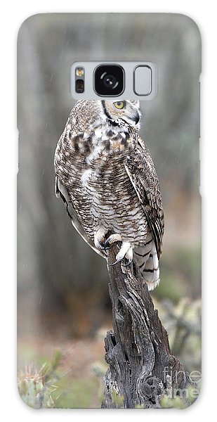 Rainy Day Owl Galaxy Case