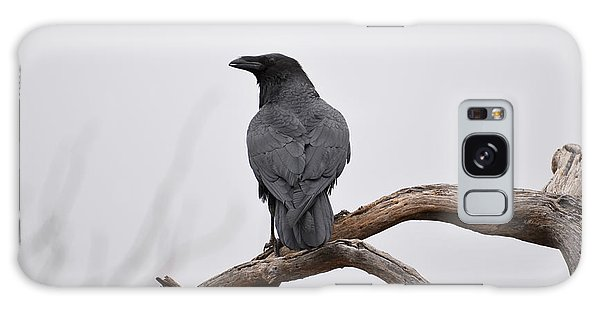 Rainy Day Raven Galaxy Case