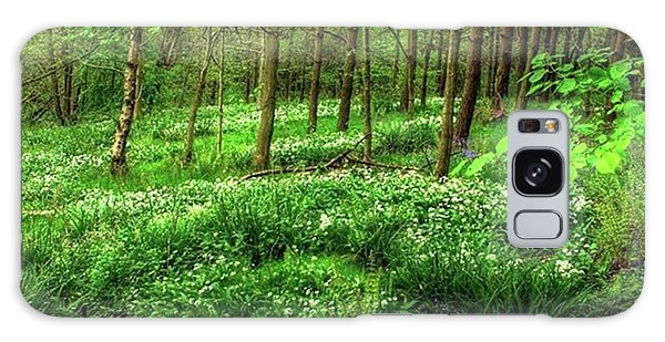 Ramsons And Bluebells, Bentley Woods Galaxy Case by John Edwards