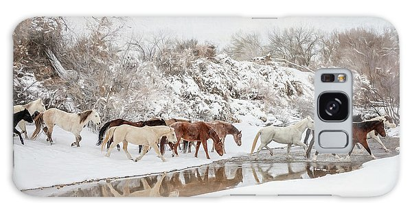 Ranch Horse Winter Galaxy Case