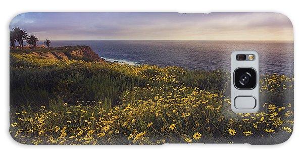 Rancho Palos Verdes Super Bloom Galaxy Case