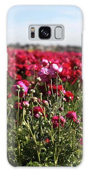 Ranunculus Field Galaxy Case