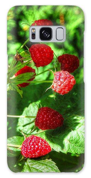 Raspberries Galaxy Case