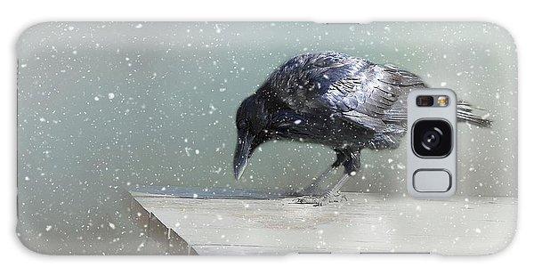 Raven In Winter Galaxy Case