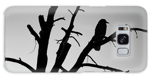 Galaxy Case featuring the photograph Raven Tree II Bw by David Gordon