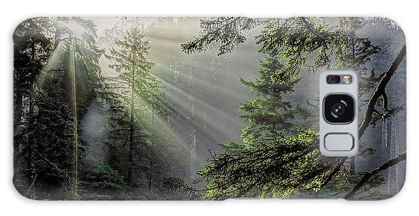 Morning Rays Through An Oregon Rain Forest Galaxy Case