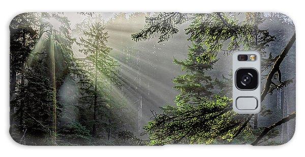 Rays Through An Oregon Rain Forest Galaxy Case