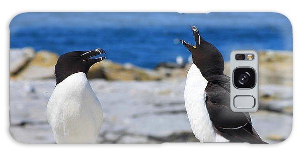 Razorbills Calling On Island Galaxy Case