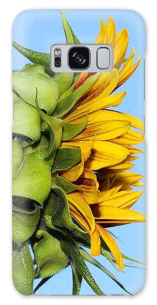 Reaching Sunflower Galaxy Case