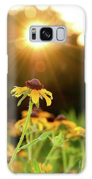 Reaching For Evening Sun Galaxy Case