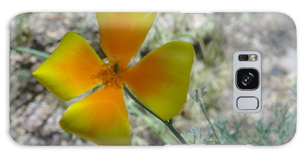One Gold Flower Living Life In The Desert Galaxy Case