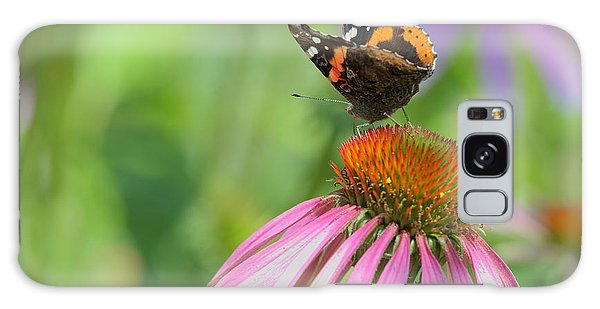 Red Admiral On Cone Flower Galaxy Case