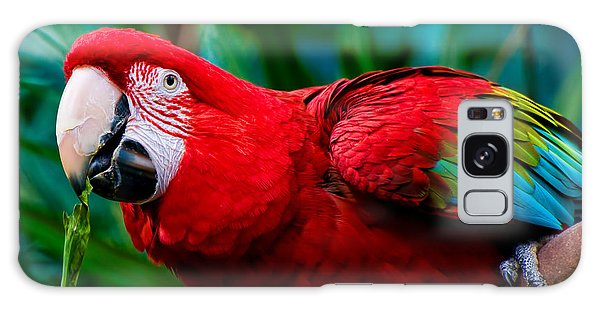 Red And Green Macaw Galaxy Case