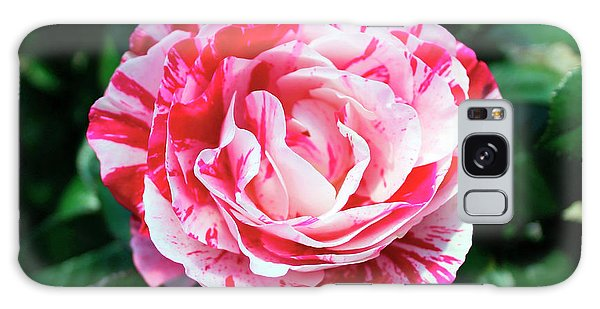 Red And Pink Floral Candy Rose Garden 490 Galaxy Case