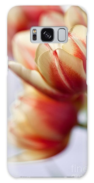 Tulip Galaxy S8 Case - Red And White Tulips by Nailia Schwarz
