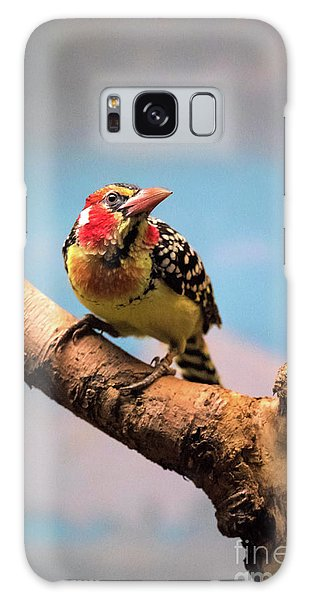 Red And Yellow Barbet Galaxy Case
