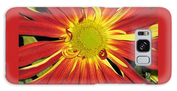 Red And Yellow Flower Galaxy Case by Barbara Yearty