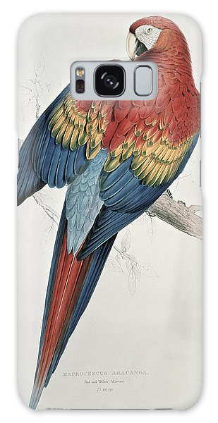 Red And Yellow Macaw  Galaxy S8 Case