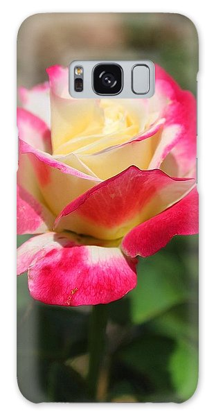 Red And Yellow Rose Galaxy Case