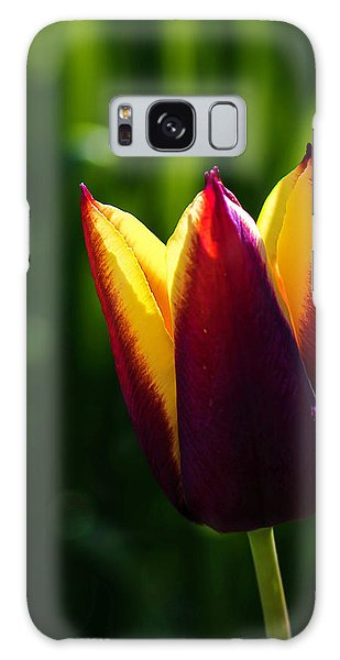 Red And Yellow Tulip Galaxy Case