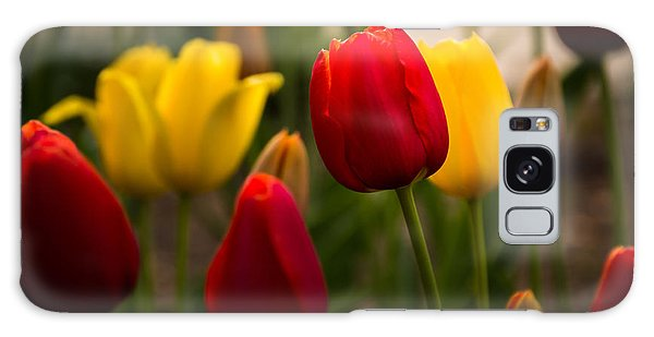 Red And Yellow Tulips Galaxy Case