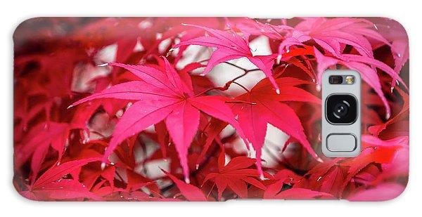 Red Autumn Galaxy Case