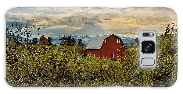 Red Barn At Pear Orchard Galaxy Case