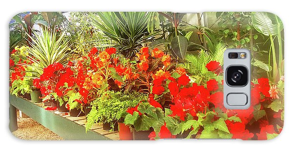 Red Begonias In The Glasshouse. Galaxy Case