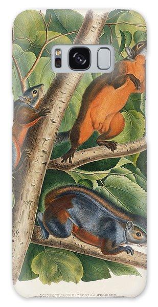 Red Bellied Squirrel  Galaxy Case by John James Audubon