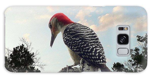 Red-bellied Woodpecker - Tree Top Galaxy Case